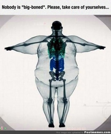 big boned myth